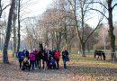 Jesienny plener TGF w stadninie koni